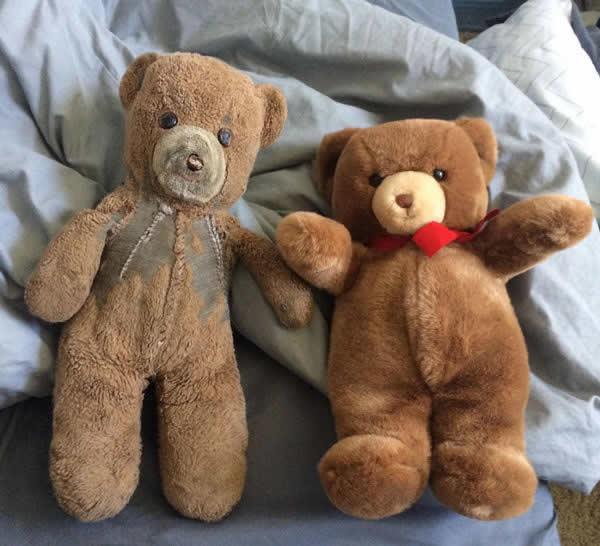 Knuffelbeer en zijn replica